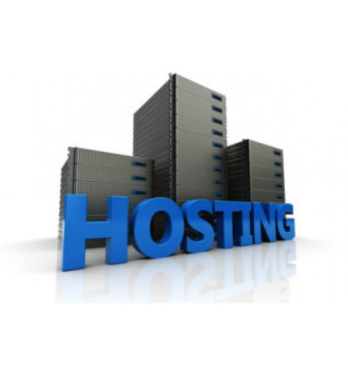 Hosting 100MB